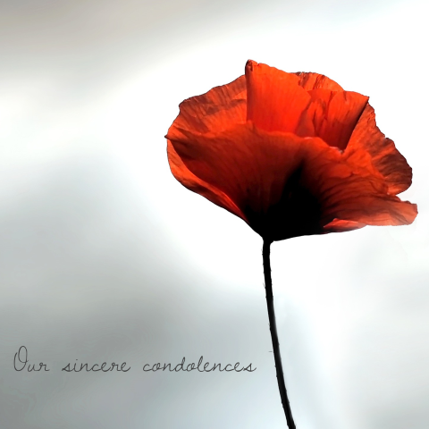 Our sincere condolences card