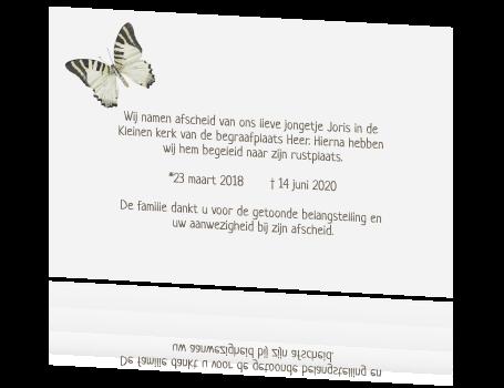 Herinneringskaartje overleden kindje met grijze vlinder en taupe - Grijze ruimte en t aupe ...