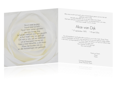 Stijlvolle Rouwkaart Met Witte Roos En Grijze Tekst