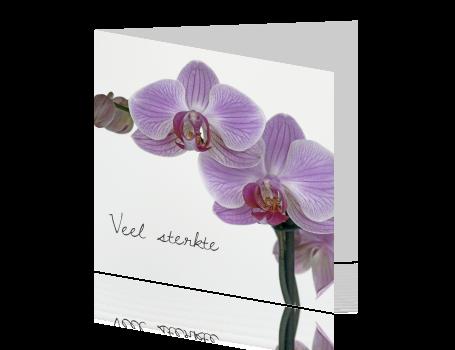 Beroemd Veel sterkte kaart na overlijden met paarse orchidee CH-99